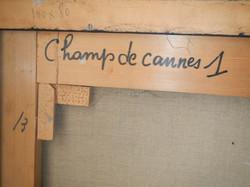 Peverelli Cesare - Champs de cannes - detail back