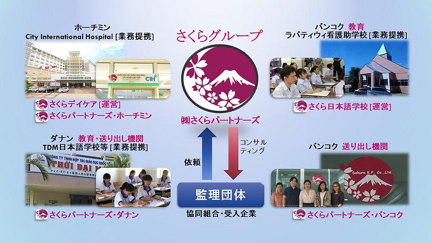 sakuraグループ図 HP用.jpg