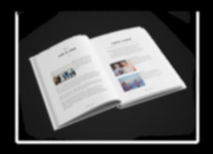 newbook3.png