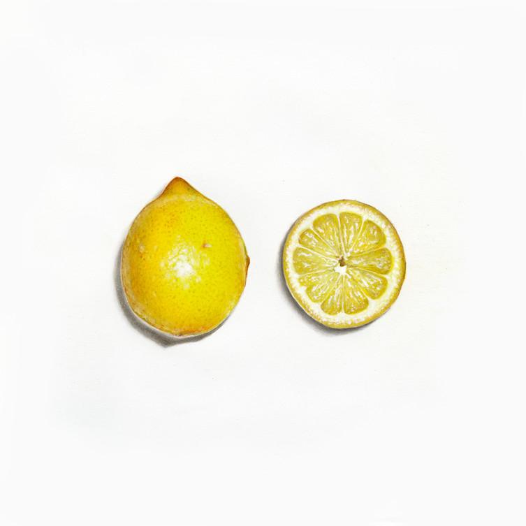 Citrus Limon {Lemon}