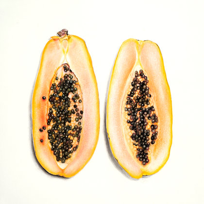 Carica Papaya {Papaya}