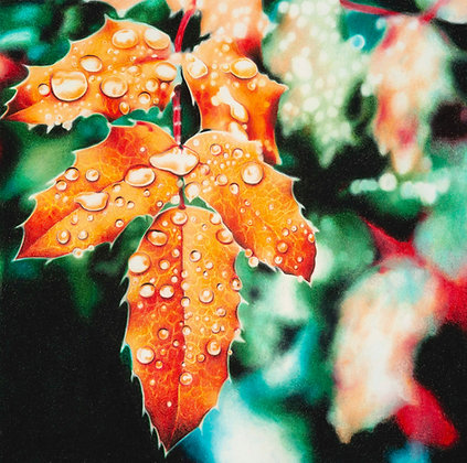 Harvest Dewdrops
