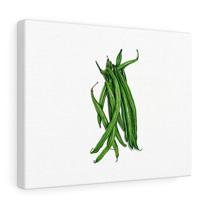 """Phaseolus Vulagris {Green Bean}"" Limited Edition Canvas Print"