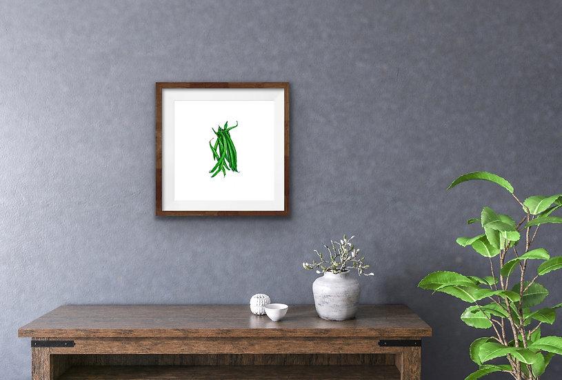 Phaseolus Vulgaris {Green Bean}