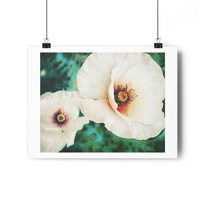 """Luminous Blossom"" Limited Edition Print"