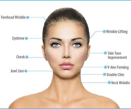 Facial Areas.jpg
