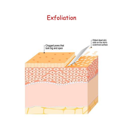 Exfoliation.jpeg