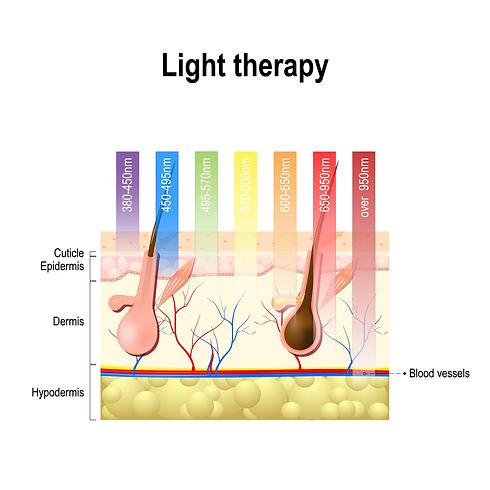 LED Science.jpeg