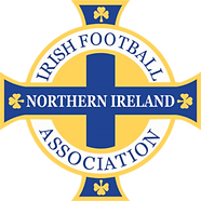 northern_ireland_national_football_team_