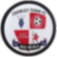 Crawley Town FC copy.png