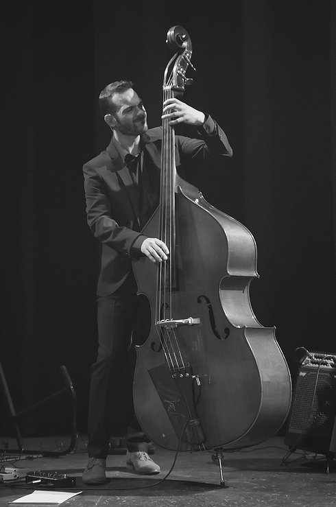 Henry Willard Double Bassist London