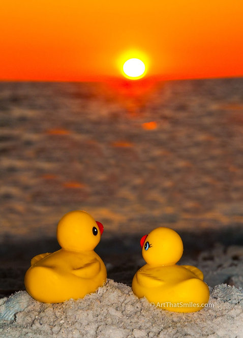 Romantic rubber ducky photograph of rubber duckies enjoying sunset on Honeymoon Island State Park, Florida.