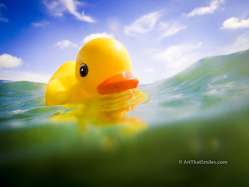 UNCHARTED WATERS - Rubber ducky taking on some uncharted waters in the Florida Keys.