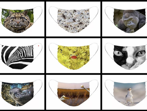 12 Face Mask Designs