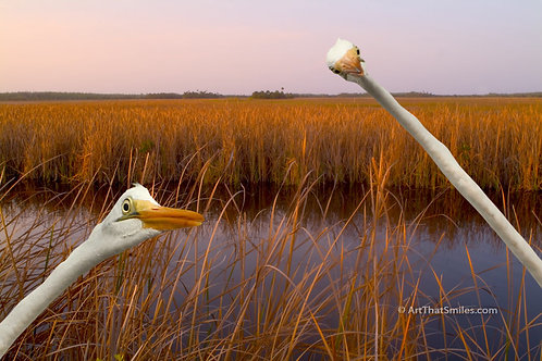 Great Egrets photo montage from the Everglades, Florida.