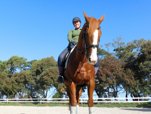 Taking Action - The Mindful Equestrian