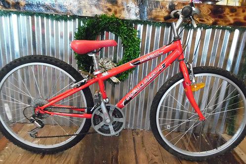 Raleigh M20 21 speed bike