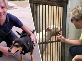 Conquista de Lisandro, veterinário gratuito em Suzano já atendeu mais de 300 animais em 2020