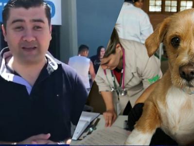 """Mil animais castrados: projeto do vereador Lisandro """"é um marco na história"""", diz prefei"""