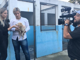 Lisandro denuncia cemitério clandestino   de animais dentro do Canil Municipal
