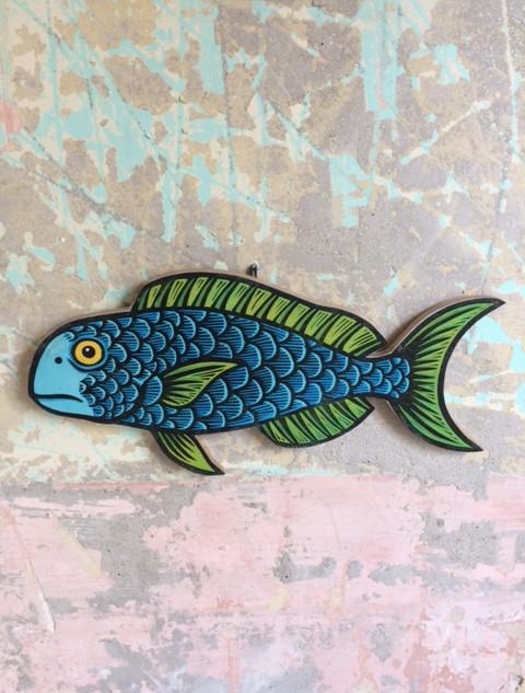 Blue Parrotfish.JPG