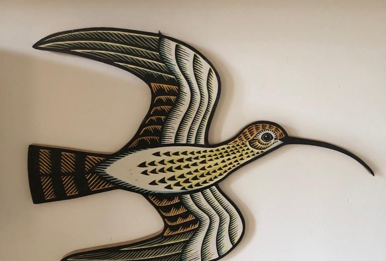 Curlew Cutout