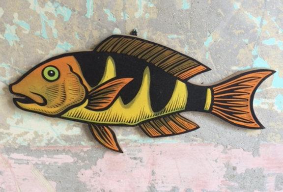 Sparus Fish