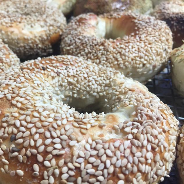 Sesame Wood Fired Bagels