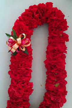 DOUBLE CARNATION  LEI