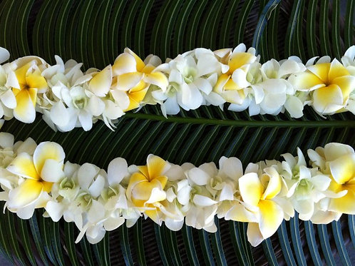 DOUBLE PLUMARIA AND ORCHID