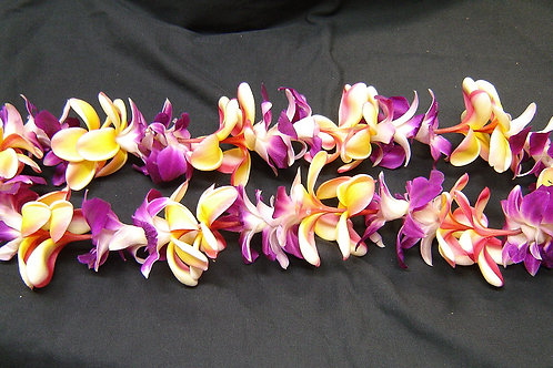 MIX PLUMARIA AND ORCHID LEI