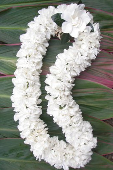 White Double Carnation lei