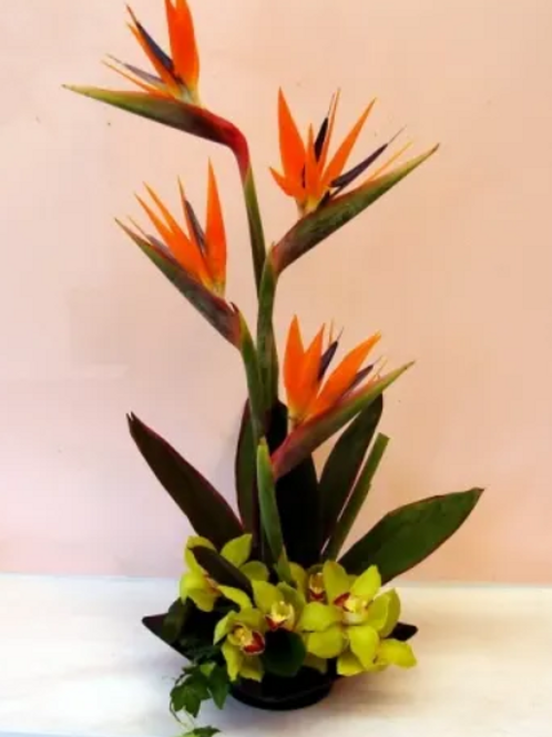 SWEET AND ELEGANT TROPICAL WITH ORCHIDS