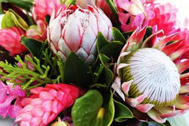 King Princely Protea Bouquet