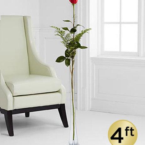 The Ultimate Rose - Single Stem 4-Foot Rose - VASE