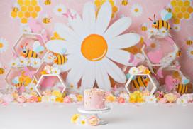 Bees and daisies watermark fb.jpg