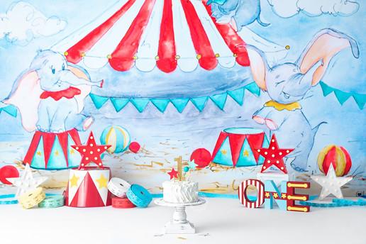 Dumbo 1 watermark fb.jpg
