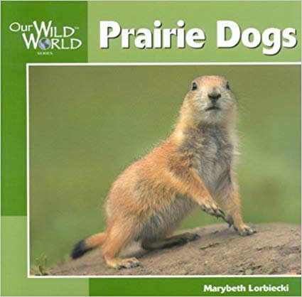 Prairie Dogs: Our Wild World