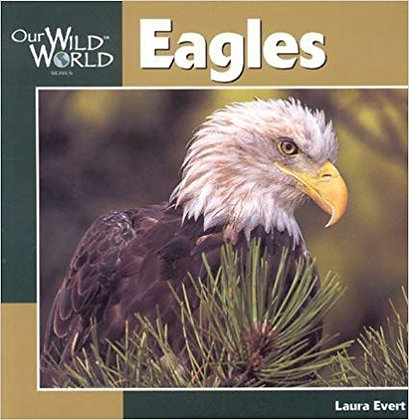 Eagles: Our Wild World