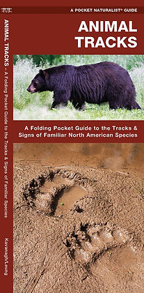 Animal Tracks: A Folding Pocket Guide to the Tracks & Signs of Familiar North Am