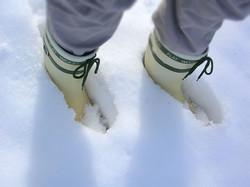2013年の大雪