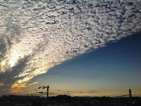 イワシ雲の絨毯