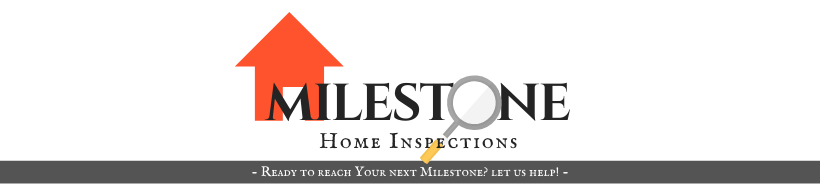 Copy of Home Inspection (12).png