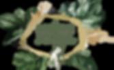 logo_la_fée_verte_transparente.png