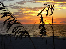 st pete beach vacation rental perfect for a romantic getaway or family friendly fun.