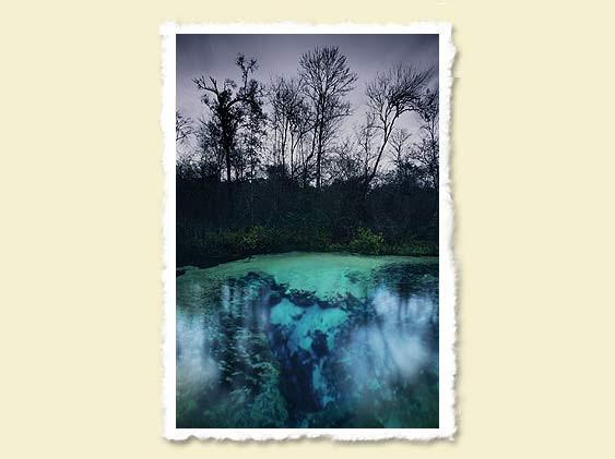 'A December Day', John Moran