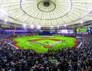 Enjoy baseball in this indoor stadium.