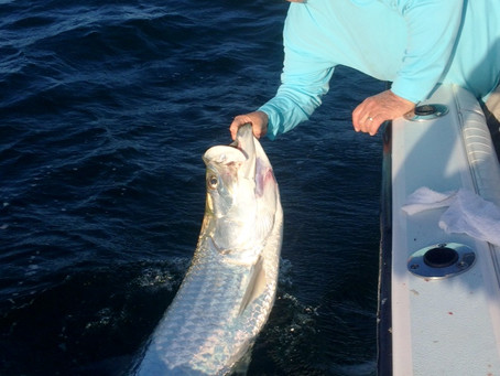 Fishing Charters what a great experience