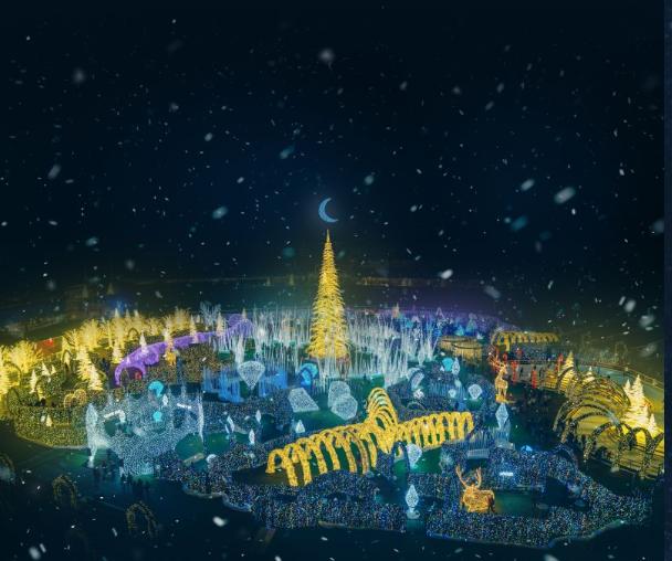 Brilliant Christmas Light Display