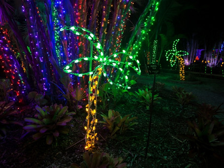 Winter Holidays in FL- everything is Bright and Merry